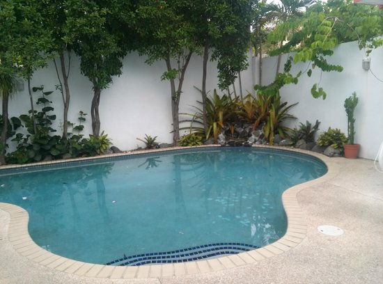 Tres Palmas Inn: Pool.