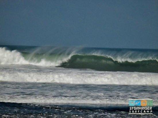 Stormrider Surfcamp Bali: in the back yard