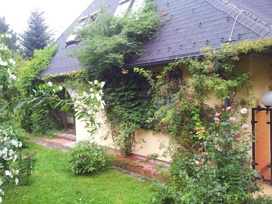 Gasthof Häuserl im Wald: The windows of the living room and of one of the bedrooms, covered with ivy