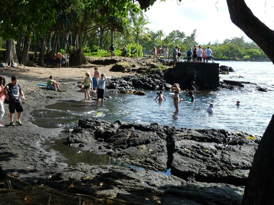 Marylou's Big Island Guided Tours - Private Tours: Richardson's Black sand beach
