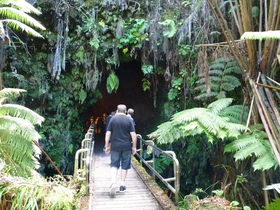 Marylou's Big Island Guided Tours - Private Tours: Thurston Lava tube
