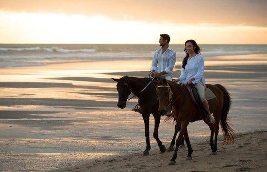 The Samaya Bali Seminyak: Horse Riding