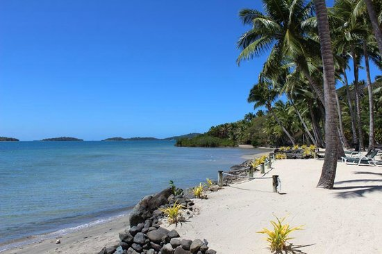 Wananavu Beach Resort: the Beach Front