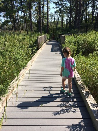 Bethany Beach Nature Center: Path to marsh lookout