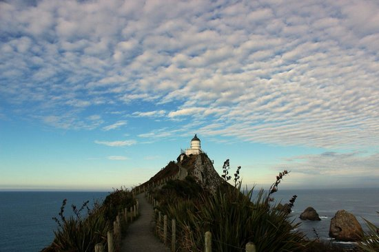 Nugget Point: Lighthouse