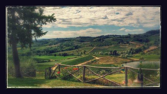 Fattoria Poggio Alloro: Blick von der Terrasse