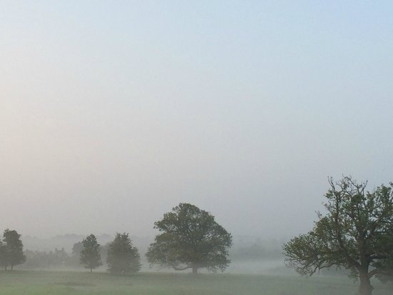 South Lodge Hotel: Early morning mist