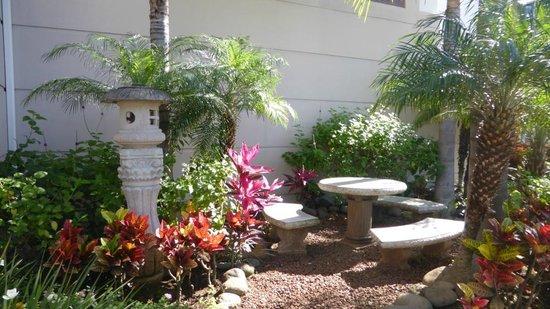 Sleep Inn Hotel Paseo Las Damas: Le petit jardin zen à l'entrée de l'hôtel