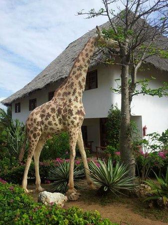 Jacaranda Beach Resort: una twiga (giraffa) nel giardino