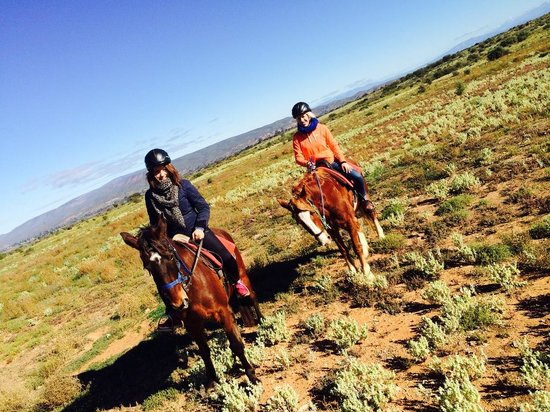 Blue skies almost all year round - Picture of Kango Horse Riding