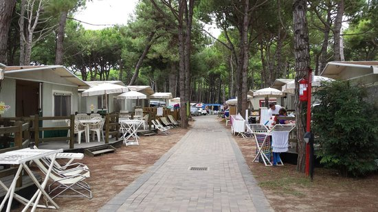 Ca'Pasquali Village: The little avenue of tents and caravans