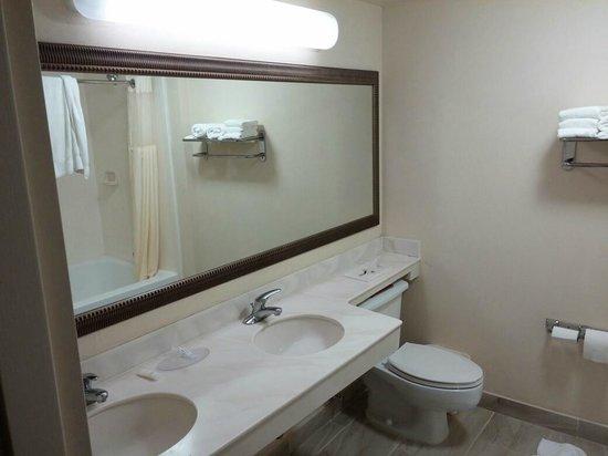 Clarion Inn  & Suites Miami Airport: Bathroom.