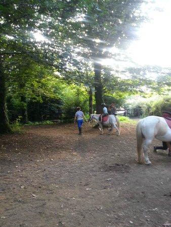 Agriturismo Iacchelli: Passeggiata Pony