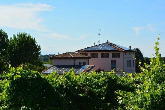 Le Stanze di Bacco, Societa Agricola Bonfiglio snc