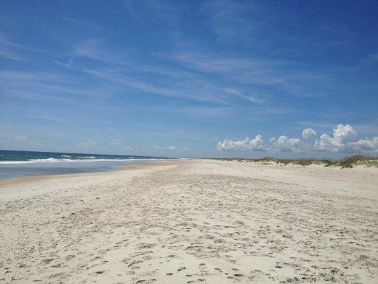 Masonboro Island Reserve : The beautiful beach