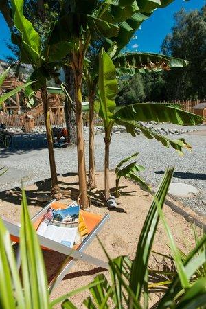 Piscine cologique avec toboggan et jeux aquatiques for Piscine ecologique