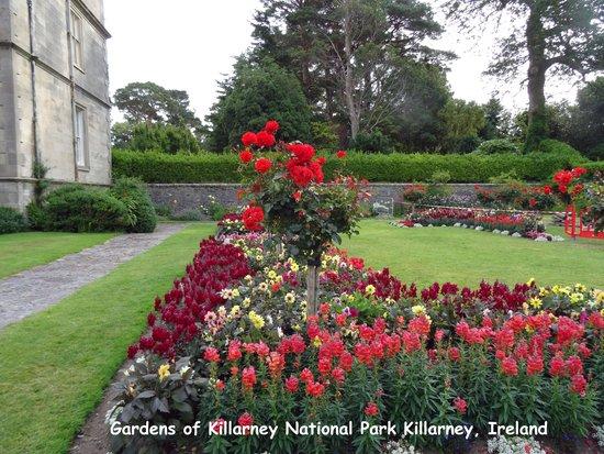 Muckross House, Gardens & Traditional Farms: Nice Gardens