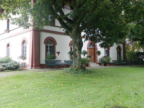 Botanischer Garten Brüglingen / Grün 80: Grounds