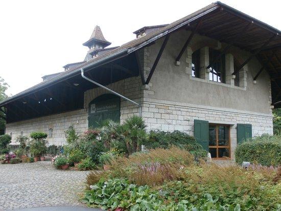 Botanischer Garten Brüglingen / Grün 80: Horse museum