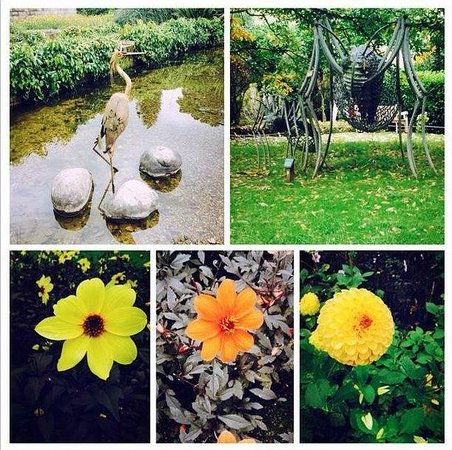 Durham University Botanic Garden: Some of the flowers and sculptures.