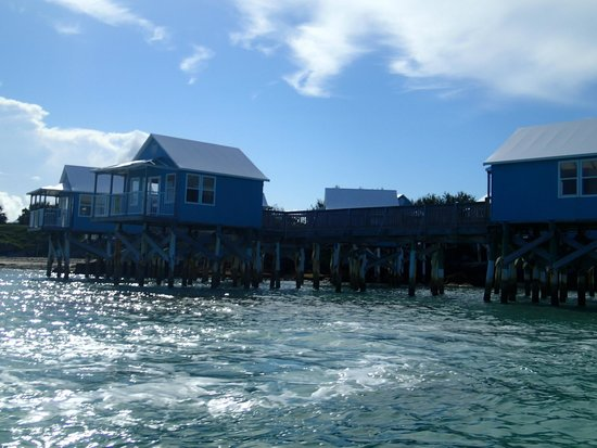 BDA Watersports: One of the places we saw