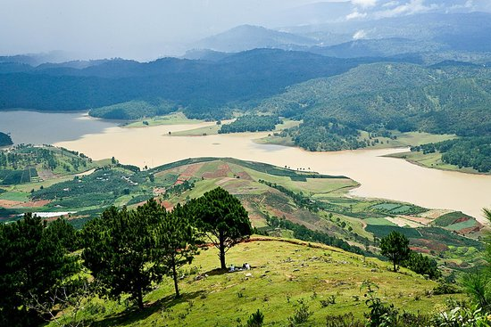 Dalat T.M Brother Travel - Day Tours