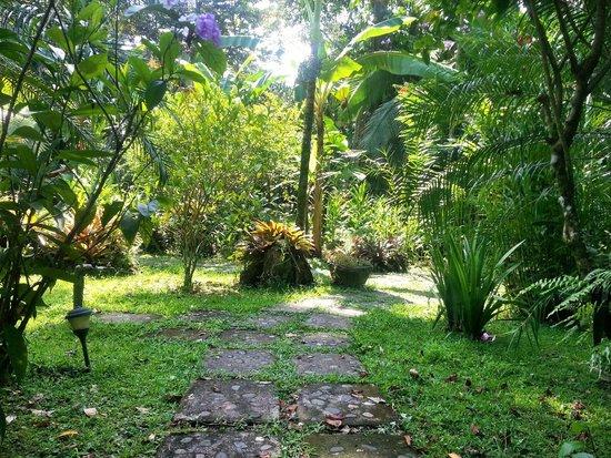 El Nido Cabinas: Vista del Giardino
