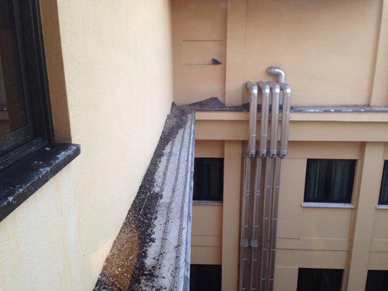 NH Firenze: Escrementi di piccione fuori dalla finestra.scandaloso!