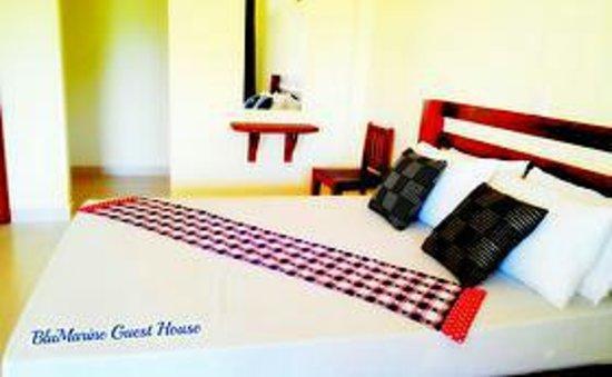 BluMarine Guest House