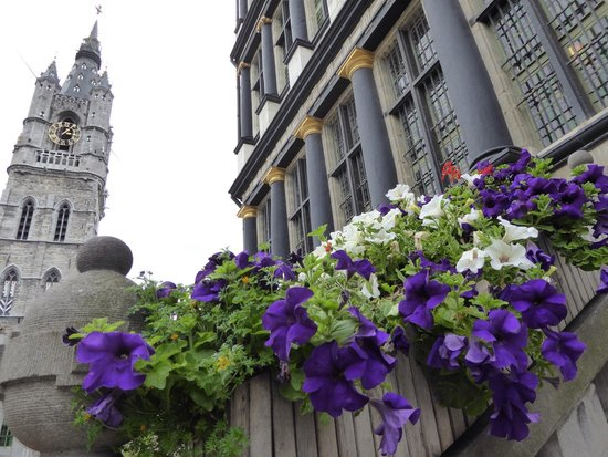 Ghent Town Hall (Stadhuis): 市庁舎アプローチに花が。