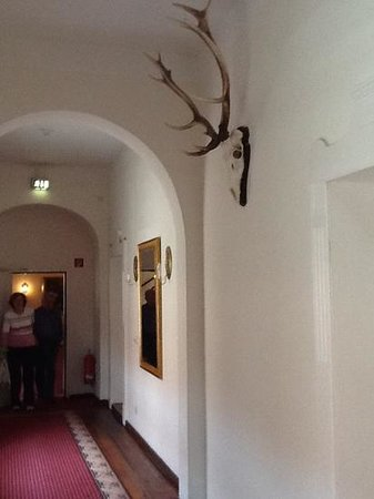 Hotel Graf von Mansfeld: коридор