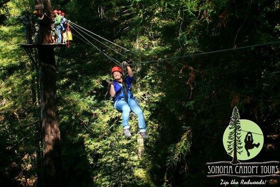 Sonoma Canopy Tours: Amber ziplining