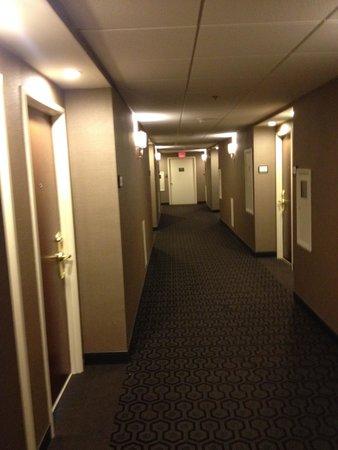 Sheraton Philadelphia University City Hotel: Hallway