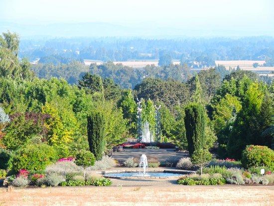 Oregon Garden Resort: View from the restaurant.