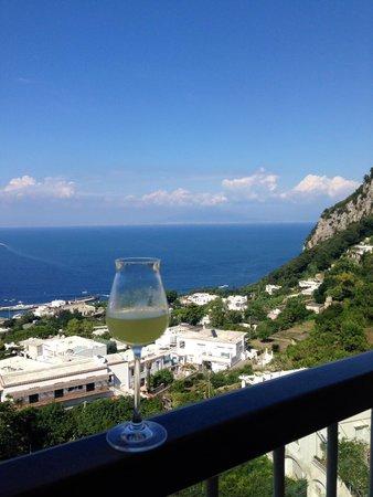 Tours Pompei: View from Capri restaurant