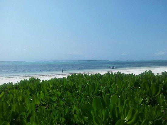 Villa Kiva Resort and Restaurant: Vista desde su playa privada