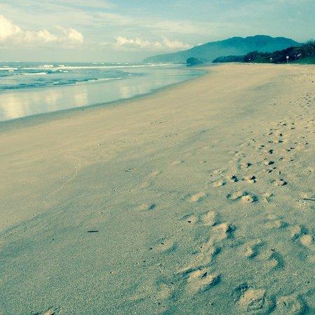 Hotel El Manglar: Playa Grande