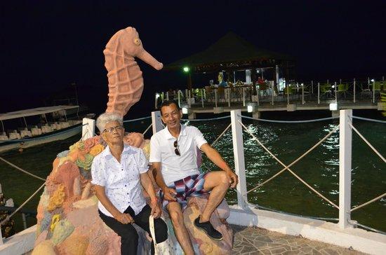 Hotel Lord Pierre : el caballito de mar