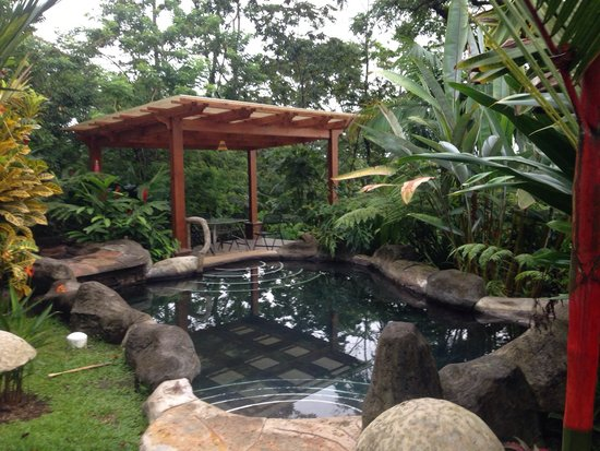 Hotel El Silencio del Campo: One of the beautiful hot springs on site.