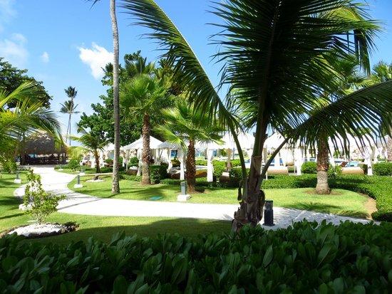 غران هوتيل ايباروستار بافارو: View from our room...1st level corner oceanfront