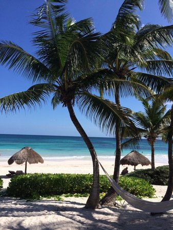 Hip Hotel Tulum: View from our room