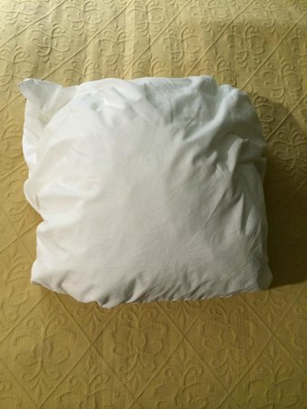 Quality Inn & Suites -- South San Francisco: There were four really tiny and flat pillows on the bed