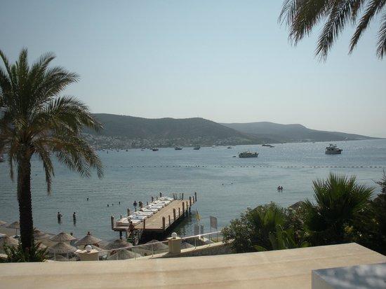 Salmakis Resort & Spa: sunbeds on decking
