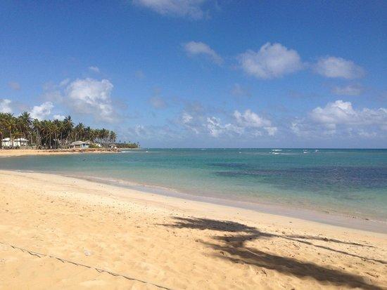 Breathless Punta Cana Resort & Spa: Breath taking beach