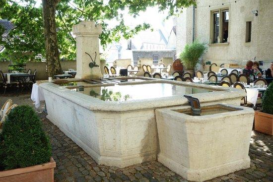 Hotel Brasserie au Violon: jardin terrasse avec la grande fontaine