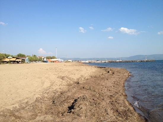 Skala Kallonis, Yunani: Kalloni beach is not very good