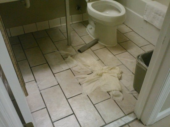Quality Inn Fort Gordon: Toilet overflow was not cleaned up all day