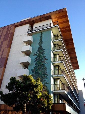 Nobu Hotel, Epiphany Palo Alto: Ephiphany