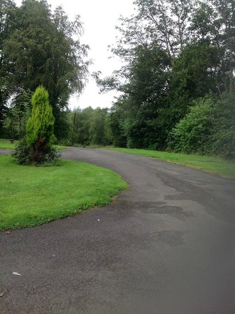 Foxglove Cottages: Driveway to cottages