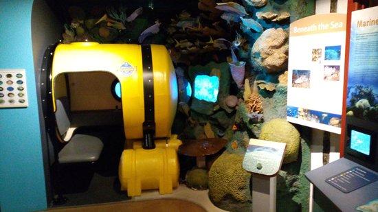 Cayman Islands National Museum: reproducción del fondo marino